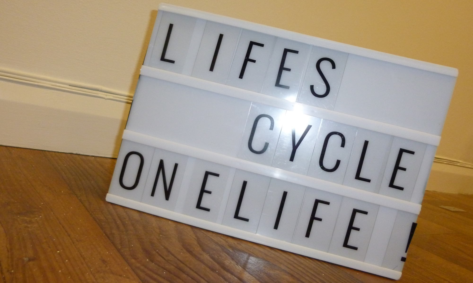 LifesCycle